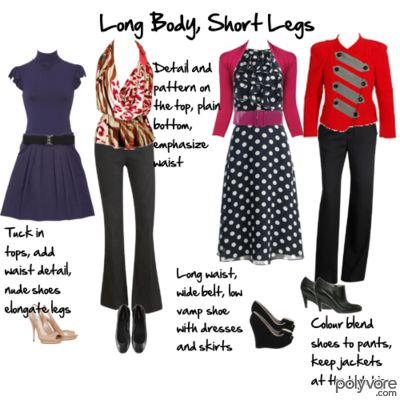 Body Proportions Explained – Long Body, Shorter Legs