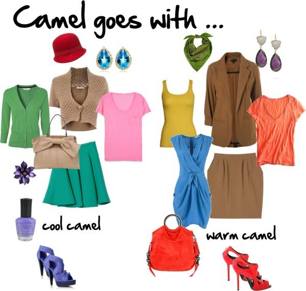 Camel goes with