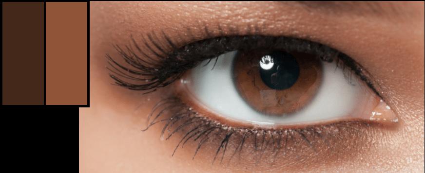 Warm brown eye
