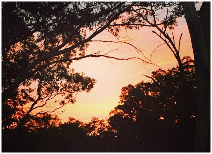 Sunrise in Coonabarrabran