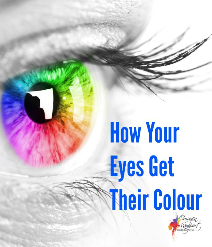 How your eyes get their colour