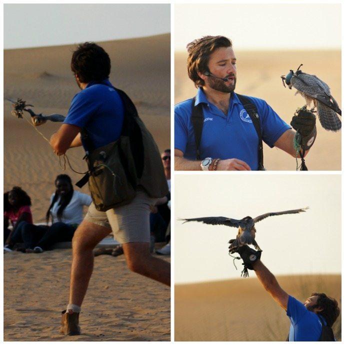 Dubai Desert falconry show