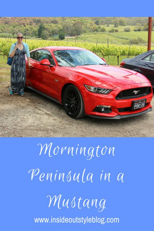 Visit the Wineries of Mornington Peninsula just outside of Melbourne