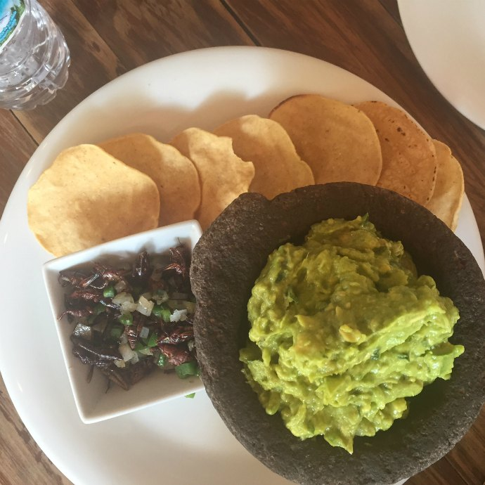 Mexico city delicacies- guacamole with grasshopper