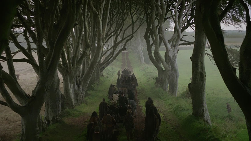 Game of Thrones - Dark Hedges - Arya Stark Escapes on the Kingsroad