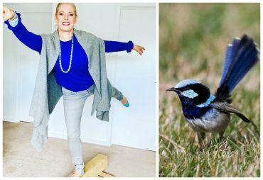 blue wren outfit inspiration