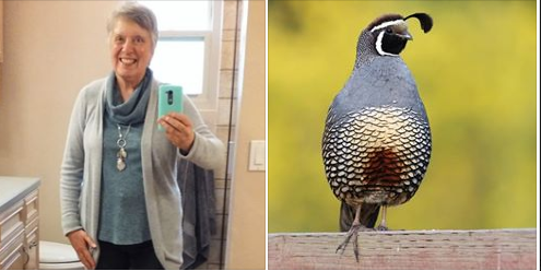 California Quail - Bird inspired outfit inspiration