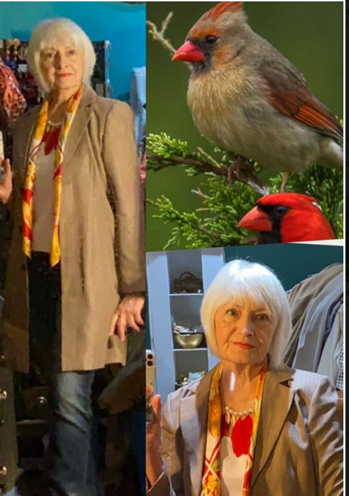 Cardinal - Bird inspired outfit inspiration