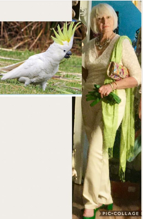 Cockatoo Inspired Outfit Combinations