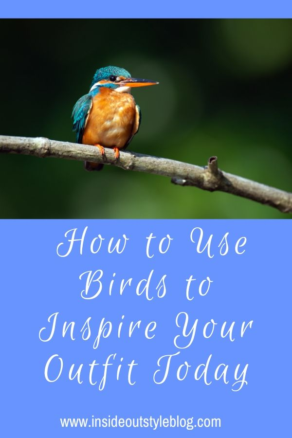 How to Use Birds to Inspire Your Outfit Today