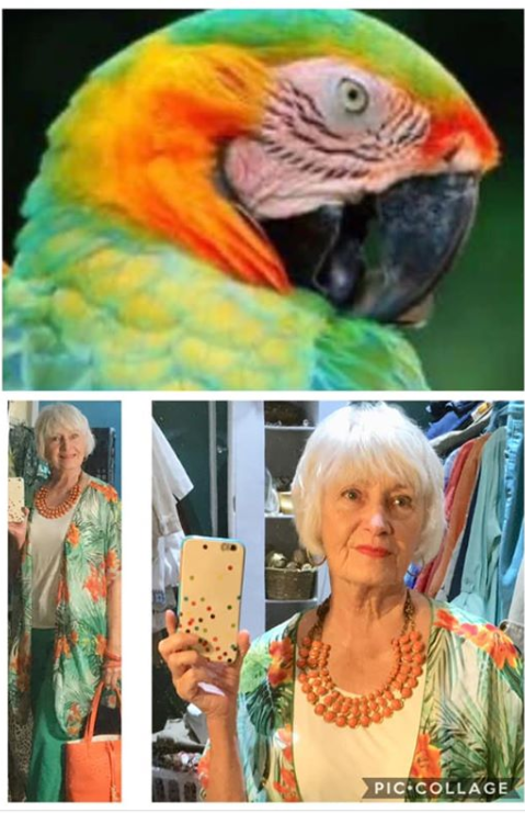 Parrot Inspired Outfit Combinations