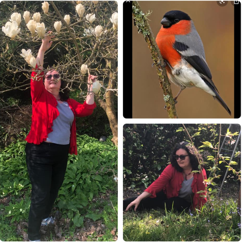 Bird - Red Robin - Inspired Outfit Combinations