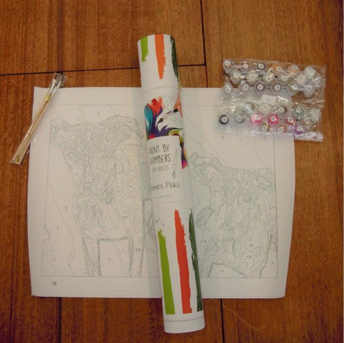 Paint by Numbers custom kit by Winnies Picks